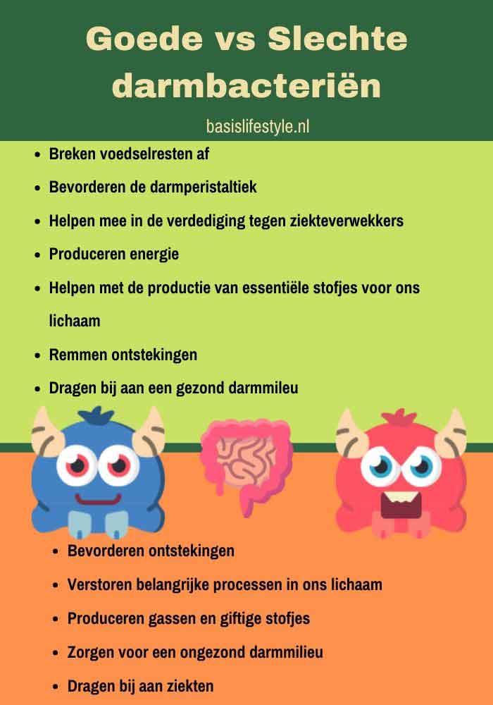 goede slechte bacterien microbioom