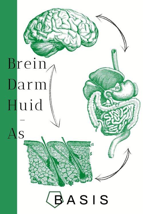 Darm Brein Huid as