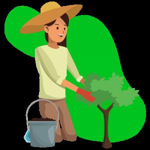 BASIS Healthy Gut Online Seeding
